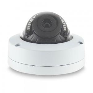 Уличная купольная IP-видеокамера 1,3 Мп 2,8 мм LMDFS130